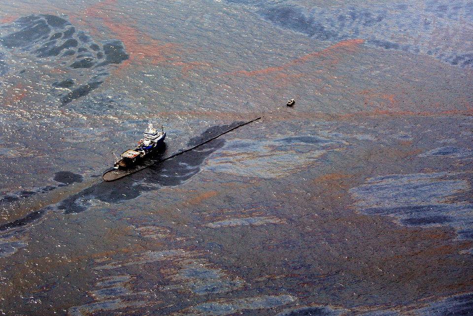 môi trường thế giới - chất thải hóa học và nông nghiệp gây ra bùng nổ tảo biển