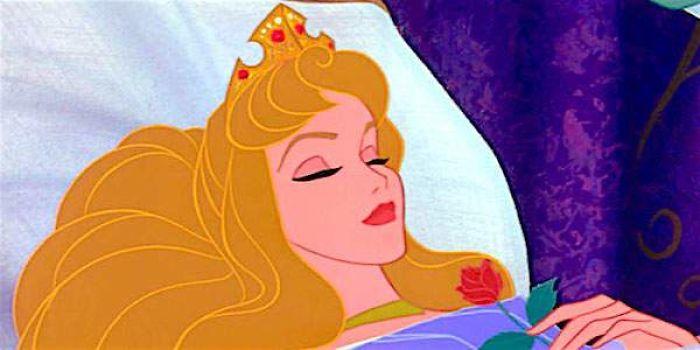 công chúa disney ngủ trong rừng bản vẽ