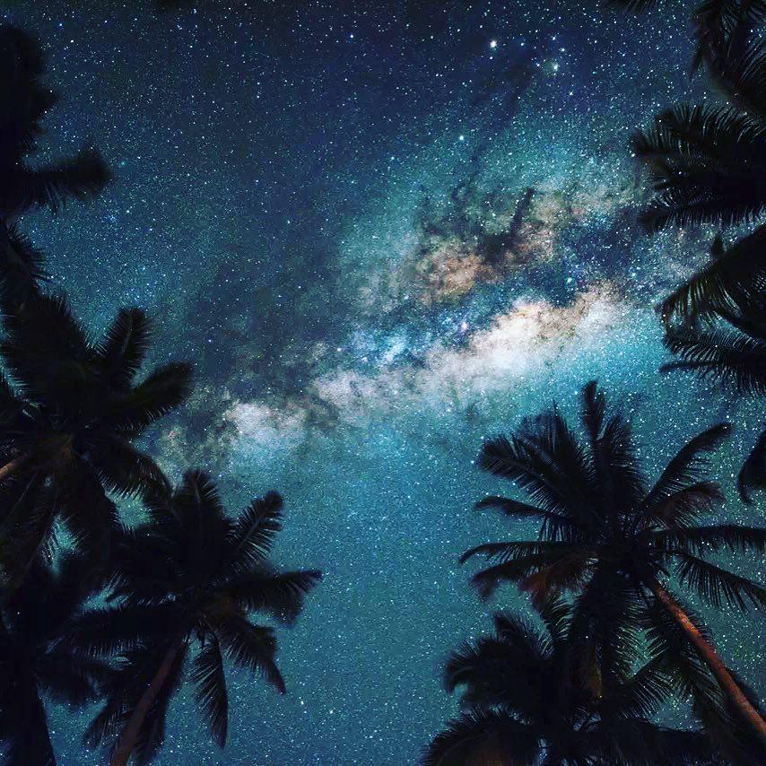 du lịch biển-biển champange về đêm