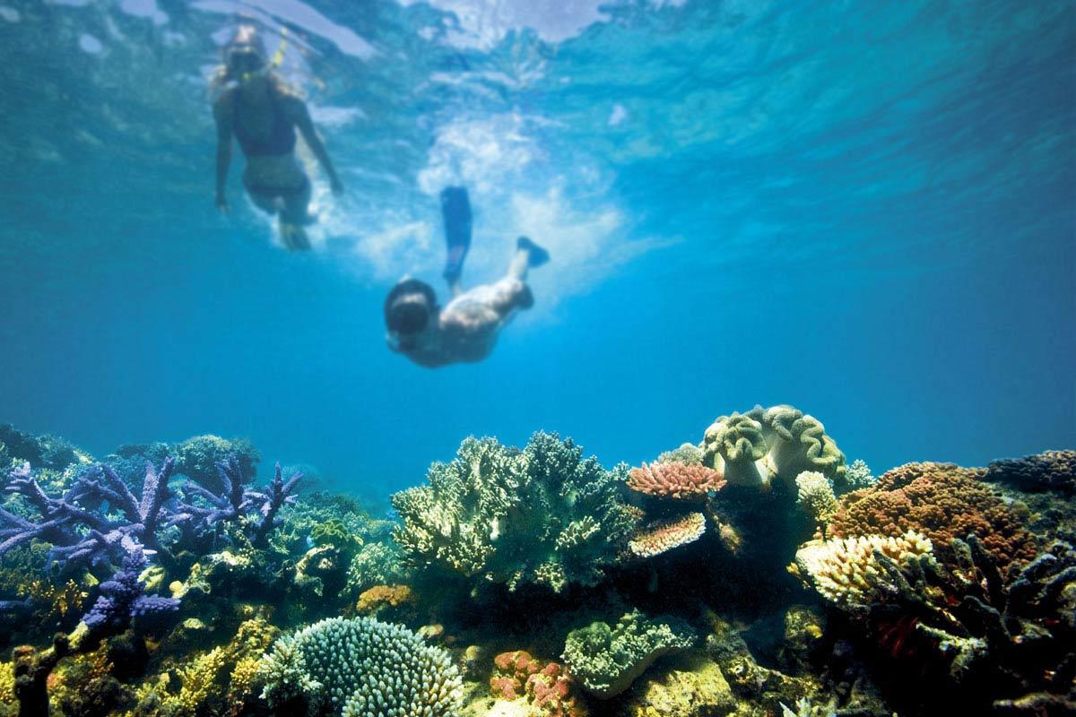 du lịch biển-great barrier reef