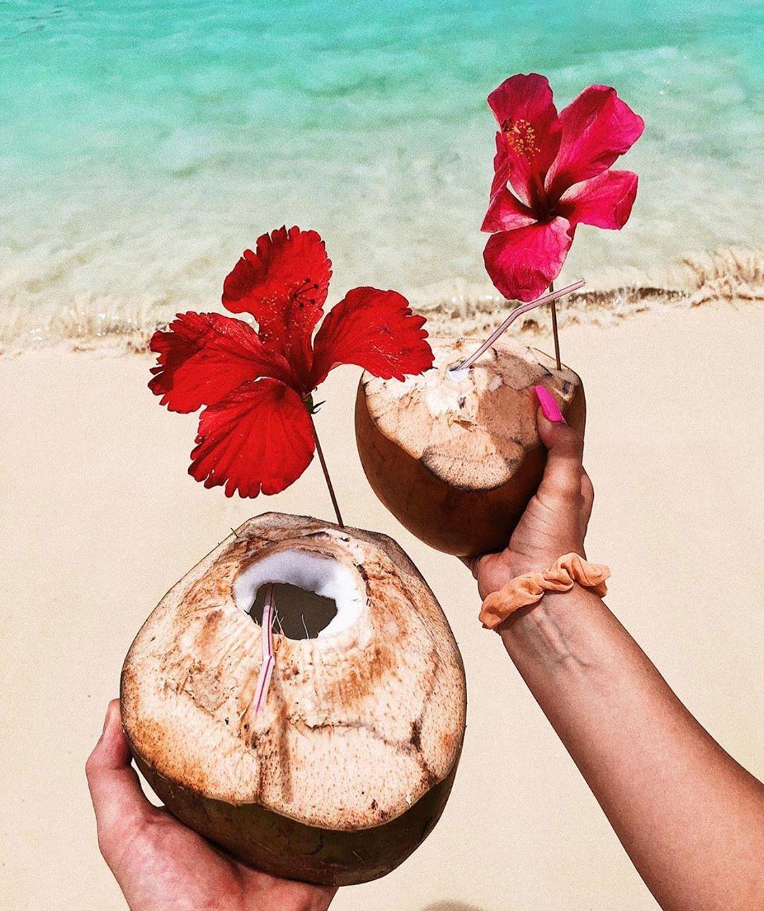du lịch biển-uống dừa bên biển champange