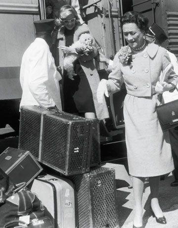công tước Windsor tại Florida 1955