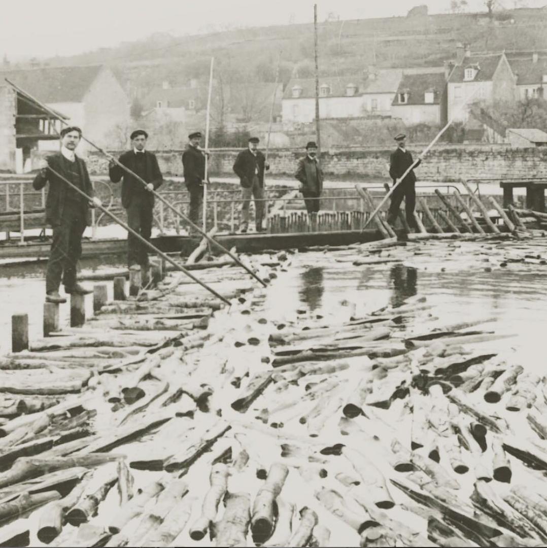 khởi nguyên của gia tộc goyard trong việc kéo gỗ