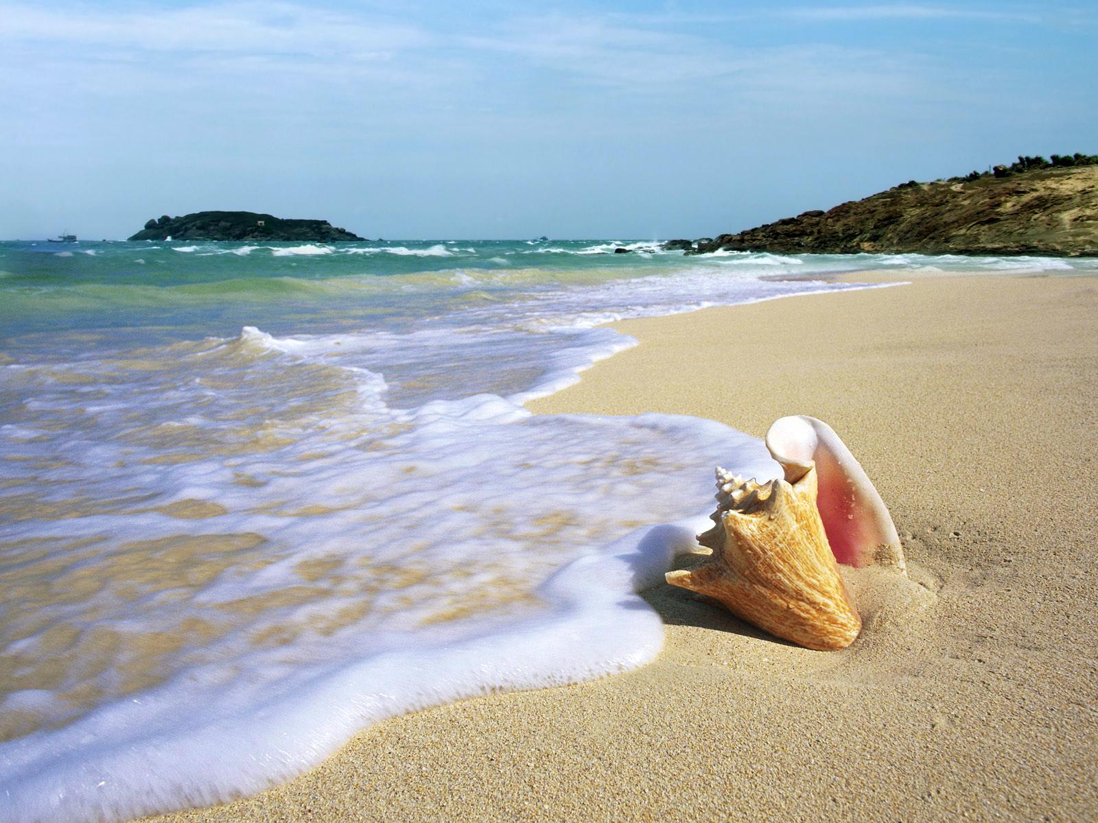 cuộc sống hạnh phúc - dạo biển - elle man