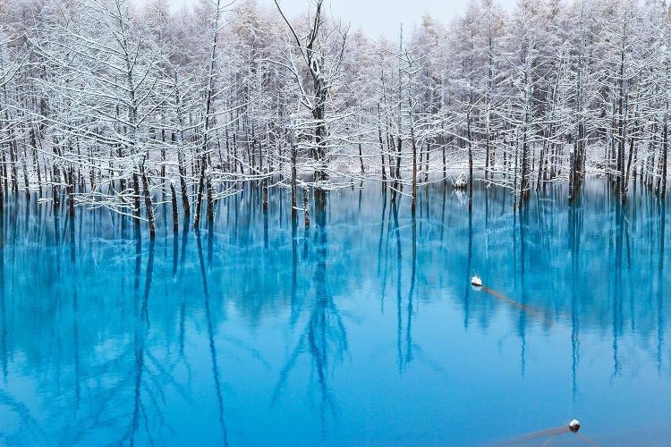 biei blue pond-elle man-1119