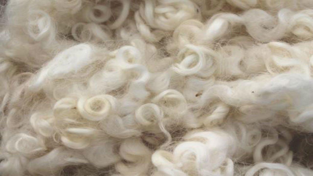 Chất liệu wool