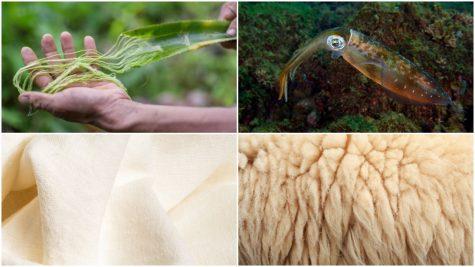 6 chất liệu vải bền vững hứa hẹn giúp bảo vệ Trái Đất