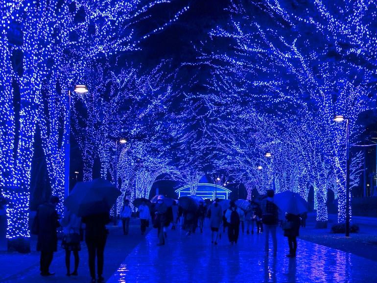 địa điểm du lịch The Blue Cavern ở Tokyo