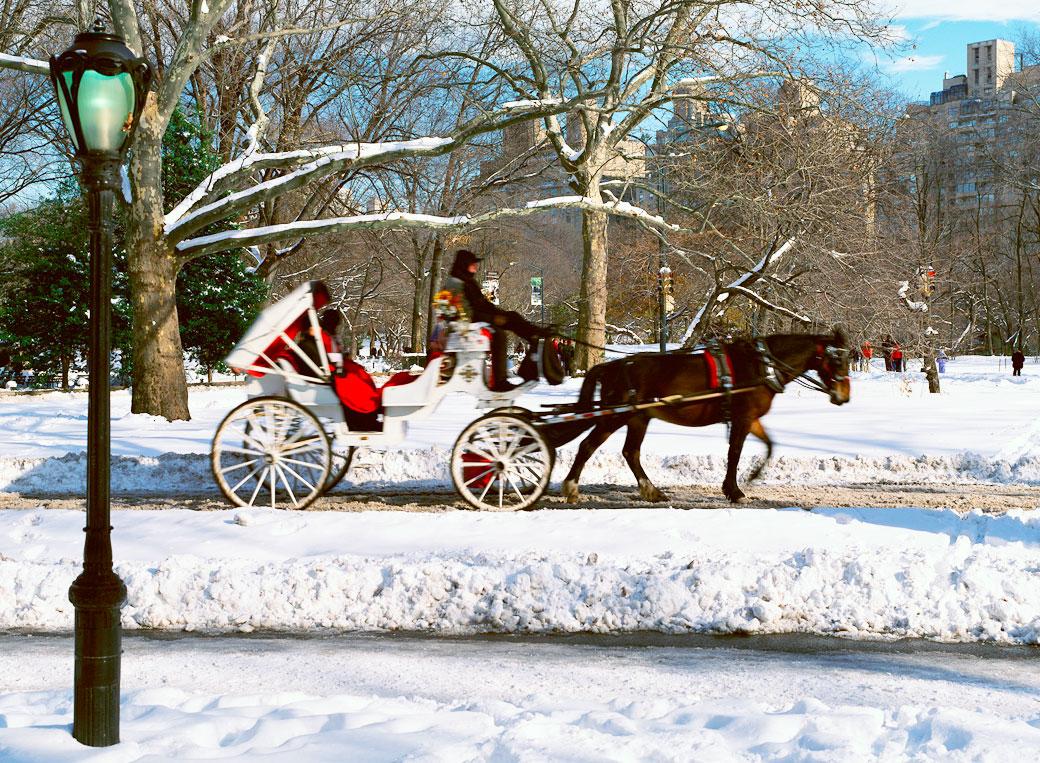cưỡi xe ngựa băng qua Central Park vào mùa Giáng Sinh