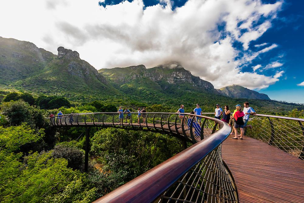 Địa điểm du lịch vườn quốc gia bách thảo Kirstenbosch, Cape Town
