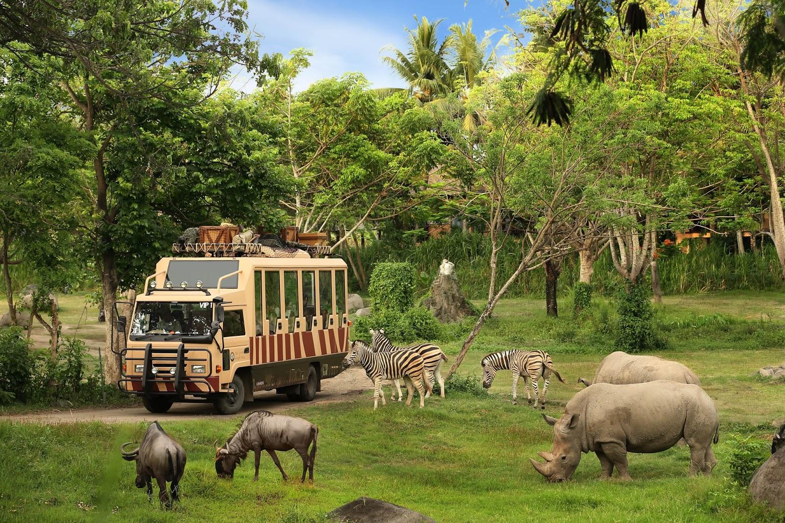 vinpearl safari-du lich tet 2020-elleman-0120