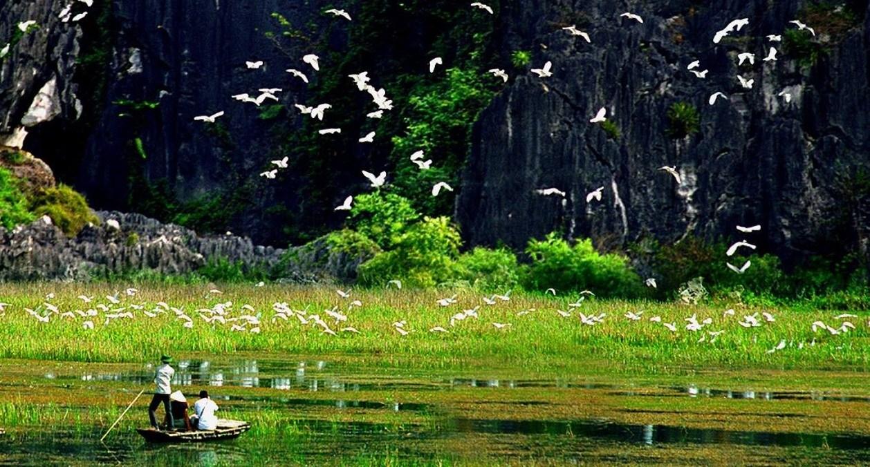 vuon chim thung nham-du lich tet 2020-elleman-0120