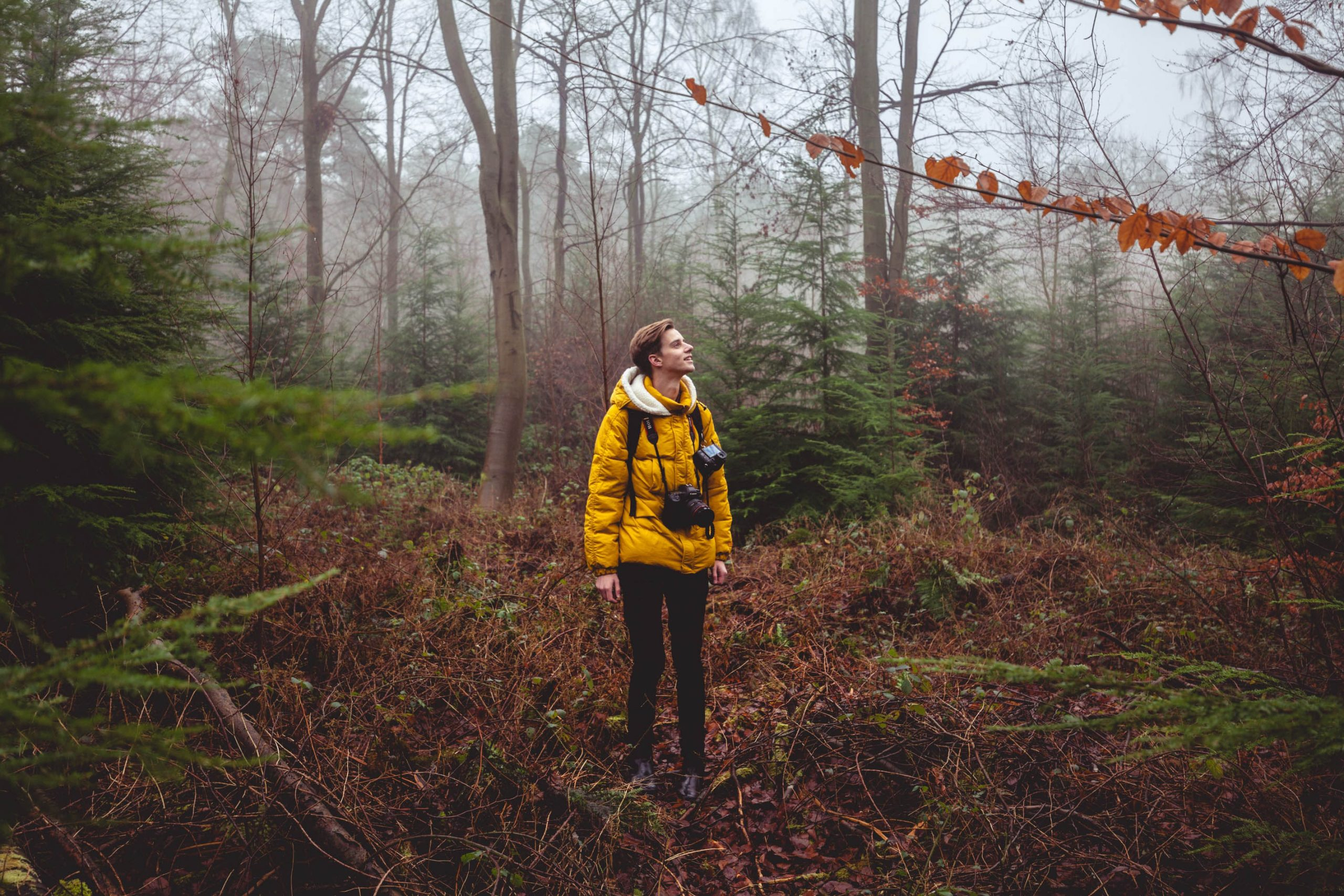 nhiếp ảnh gia trong rừng.