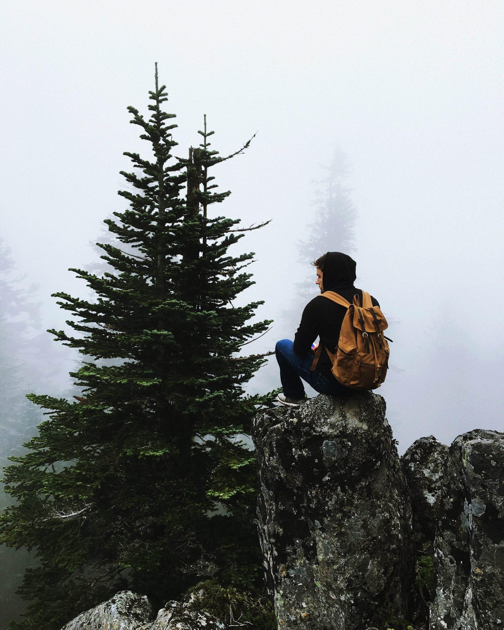 người đàn ông ngồi trên mỏm đá nhìn về phía rừng thông có sương mù.