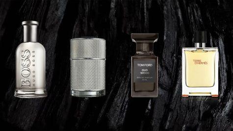 Top nước hoa nam kinh điển theo nhóm hương – Phần 6: Chủ điểm gỗ và nhóm hương ấm áp