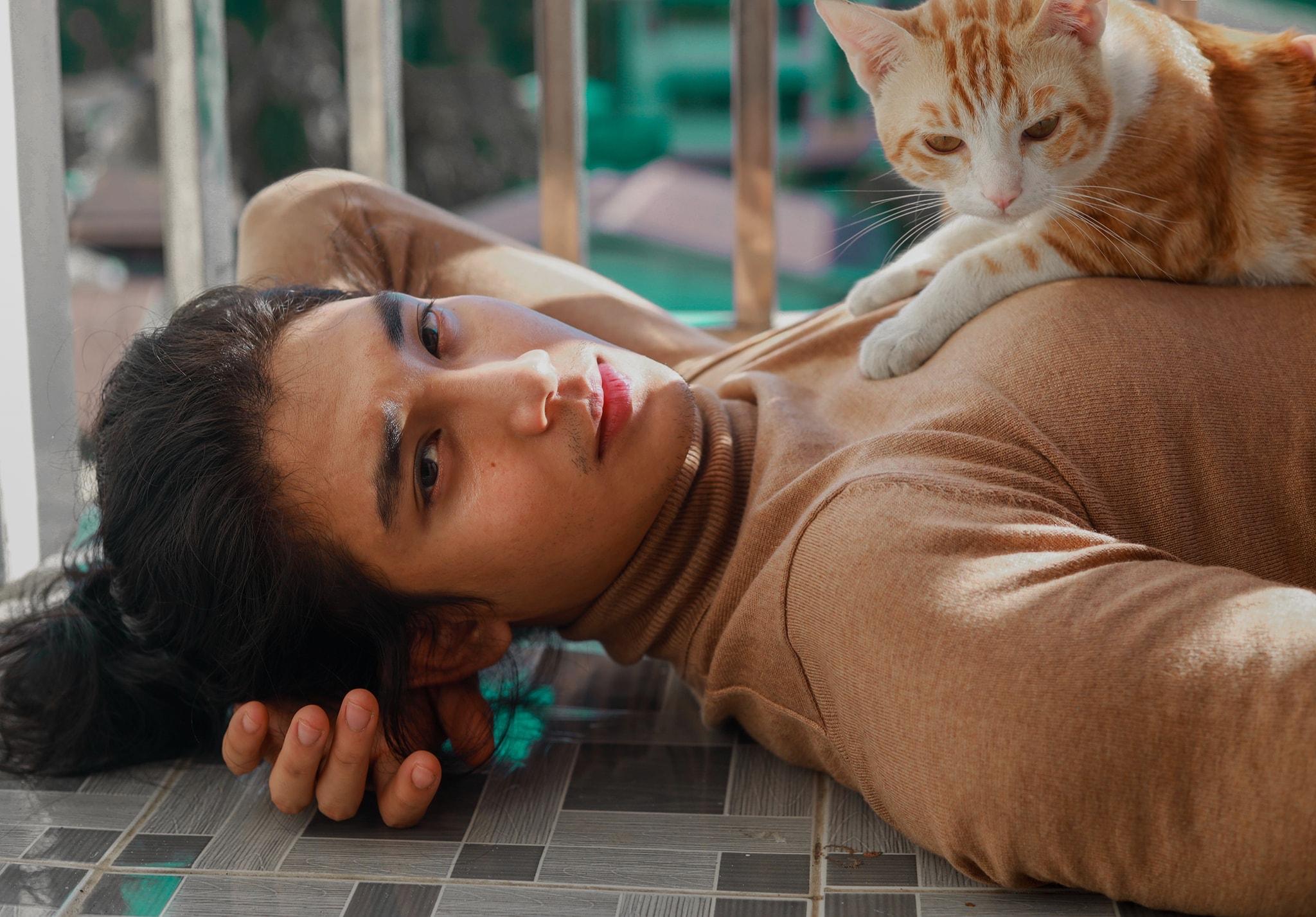 paing takhon ôm mèo