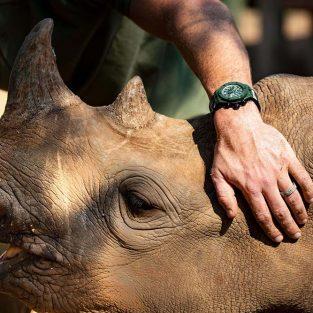 Hublot tiếp tục đồng hành cùng tổ chức bảo vệ tê giác Sorai