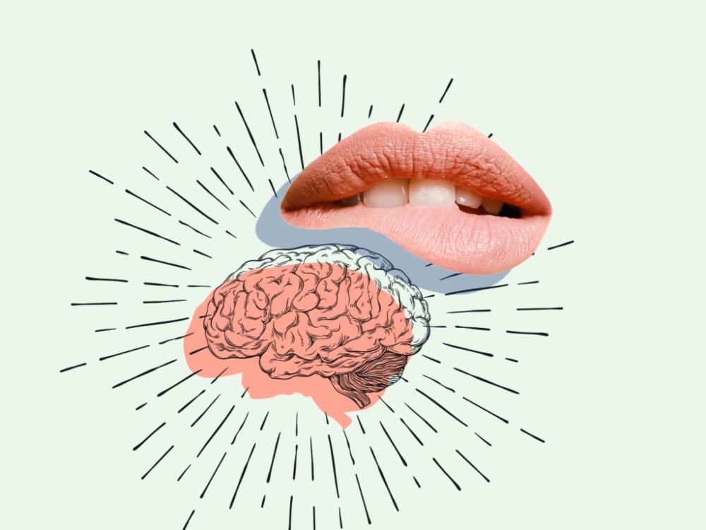 """Phản ứng của não bộ nam giới và nữ giới khi """"lên đỉnh""""."""